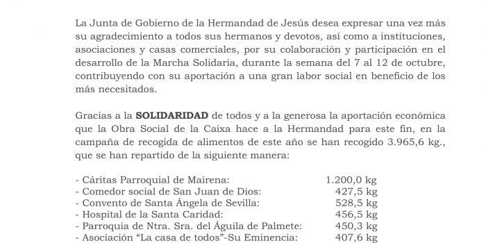 VIII Marcha Solidaria